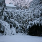 The snow that arrived eight days after the hurricane.